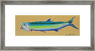 Yellow Tarpon Framed Print by Anne Marie Brown