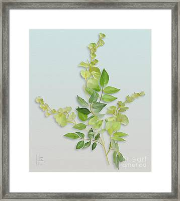 Yellow Tiny Flowers Framed Print by Ivana Westin