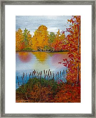 Yellow Tree At Institute Park Framed Print