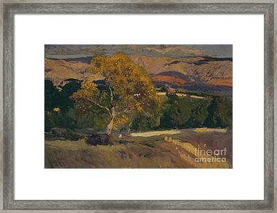 Yellow Tree Framed Print by Celestial Images