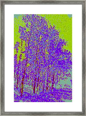 Yellow Trees D4 Framed Print by Modified Image