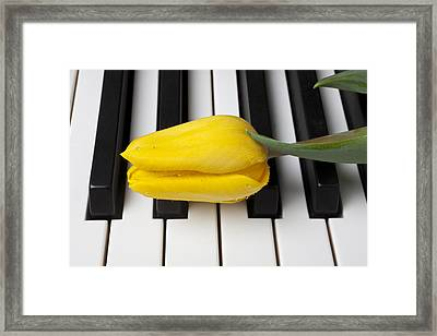 Yellow Tulip On Piano Keys Framed Print