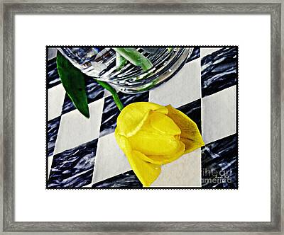 Yellow Tulip On The Checker Board Framed Print