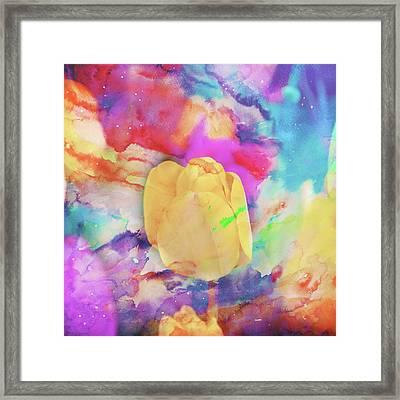 Yellow Tulip Framed Print by Toni Hopper