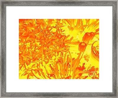 Yellow Tulips  Framed Print by John  Bichler