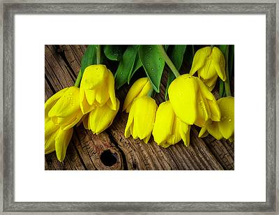 Yellow Tulips On Old Boards Framed Print