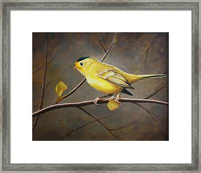 Yellow Warbler Framed Print by Pam Kaur