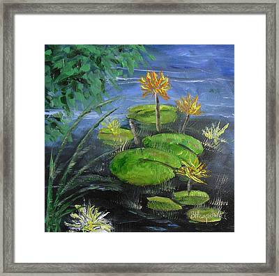 Yellow Water Lilies Framed Print by Barbara Harper