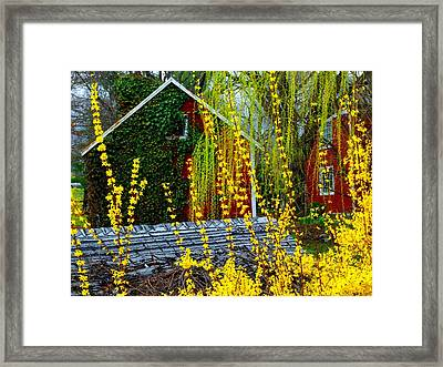 Yellow Weeds Framed Print by Michael L Kimble