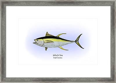 Yellowfin Tuna Framed Print by Ralph Martens