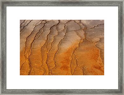 Yellowstone 2530 Framed Print