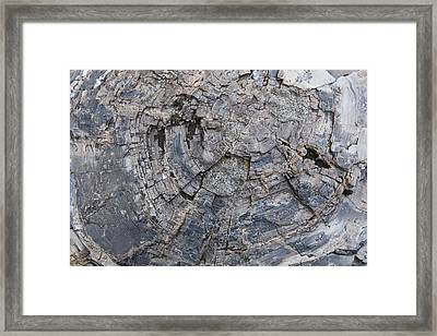 Yellowstone 3707 Framed Print