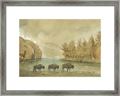 Yellowstone And Bisons Framed Print by Juan Bosco