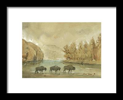 Yellowstone National Park Framed Prints