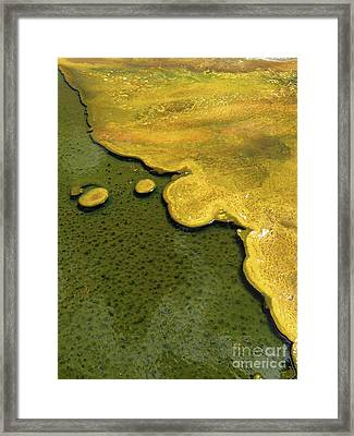 Yellowstone Art. Yellow And Green Framed Print