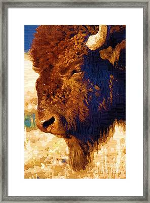 Yellowstone Buffalo Framed Print by Diane E Berry