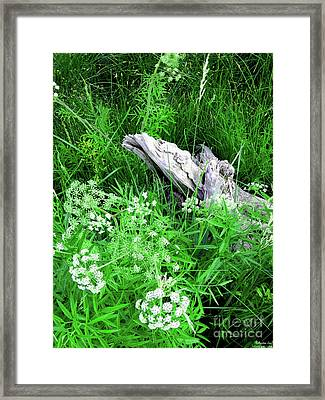 Yellowstone Lace Framed Print