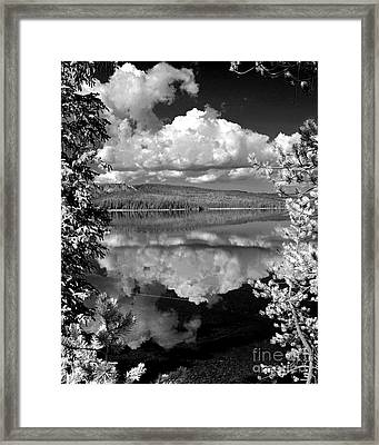 Yellowstone Lake Framed Print by Diane E Berry