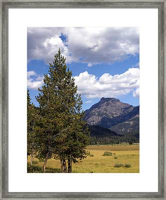 Yellowstone Landscape Framed Print by Marty Koch