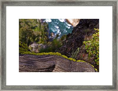 Yellowstone Moss Framed Print by Patrick  Flynn
