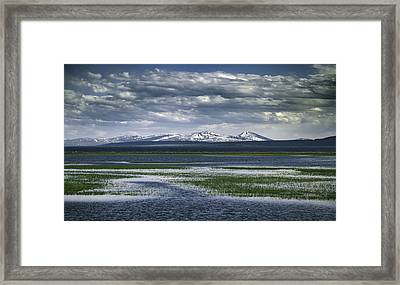 Yellowstone Mountain Scape Framed Print