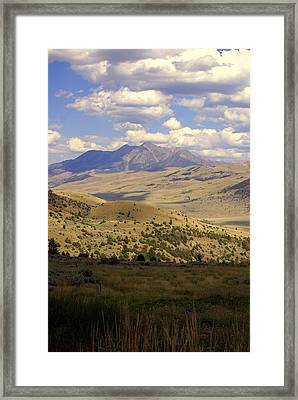 Yellowstone View Framed Print by Marty Koch
