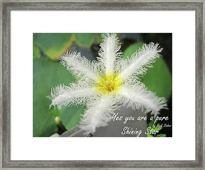 Yes You Are A Pure Shining Star Framed Print