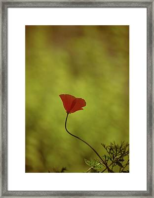 Yet She Persisted Framed Print