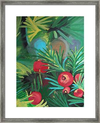 Yew Berries Framed Print