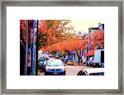 Yew Street Autumn Framed Print by Paul Kloschinsky