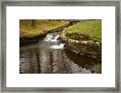 Yew Tree Tarn Overflow Framed Print