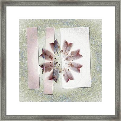 Ygapo Distribution Flower  Id 16165-043648-32811 Framed Print by S Lurk