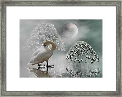 Yinyang - Moon Framed Print