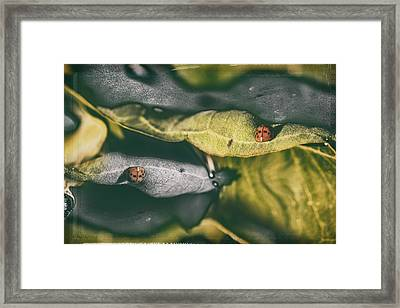 Yo, What? Framed Print