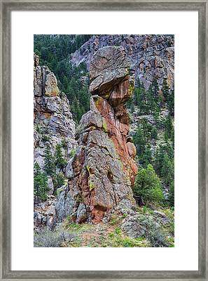 Framed Print featuring the photograph Yogi Bear Rock Formation by James BO Insogna