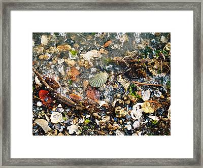York Beach Shore Framed Print