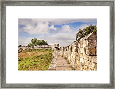 York City Walls, England Framed Print by Colin and Linda McKie