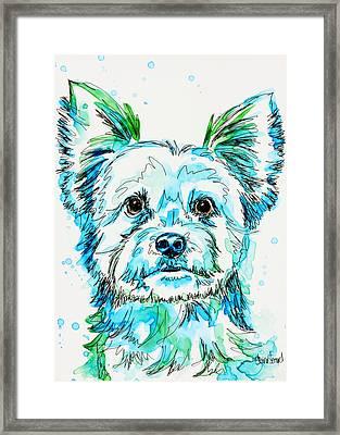 Yorkie In Green Framed Print by Shaina Stinard