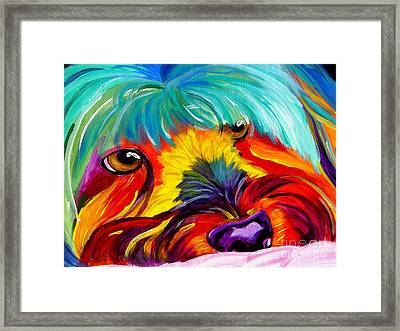 Maltese - Dreaming Of Biscuits Framed Print by Alicia VanNoy Call