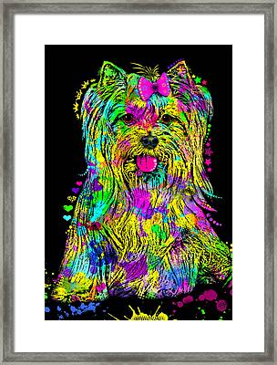Yorkie Beauty Framed Print