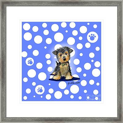 Yorkie Boy On Blue Framed Print