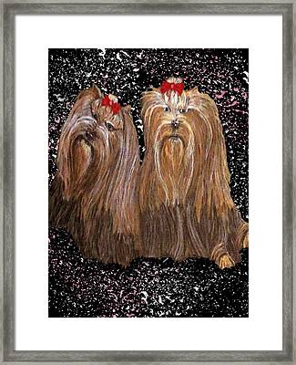 Yorkie Love Framed Print by Michelle Audas