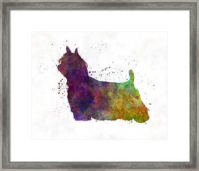 Yorkshire Terrier Long Hair In Watercolor Framed Print