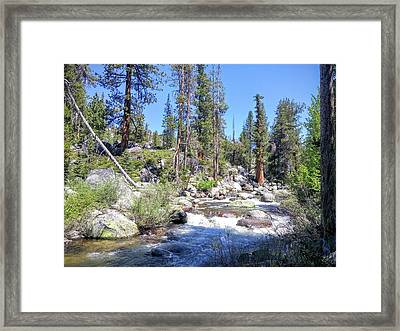 Yosemite Rough Ride Framed Print