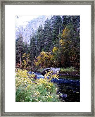 Yosemite 1 Framed Print by Vijay Sharon Govender