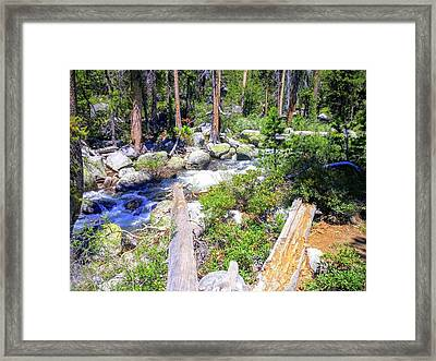 Yosemite Adventure Framed Print