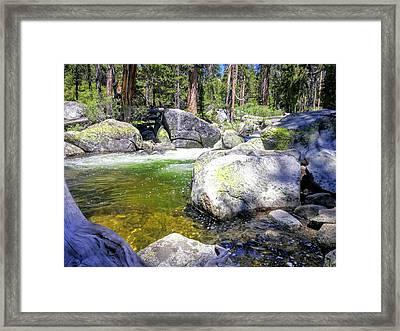 Yosemite Alive Framed Print
