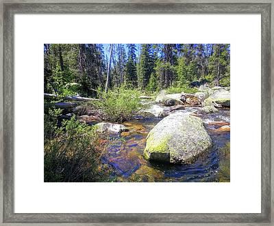 Yosemite Hidden Stream Framed Print