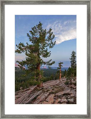 Half Dome From May Lake Framed Print