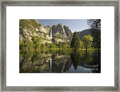 Yosemite National Park, California Framed Print by Inga Spence
